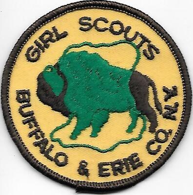 Buffalo & Erie County NY council patch (NY)