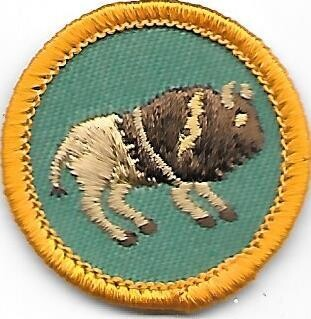 Indian Heritage Council unknown Council own Junior Badge (Original)