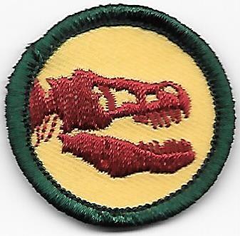 Paleontology Greater Chicago Council own Junior Badge (Original)