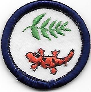 Great Smokey Mountain Tanasi Council own Junior Badge (Original)