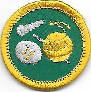 Needle and Thread Greater Chicago Council own Junior Badge (Original)
