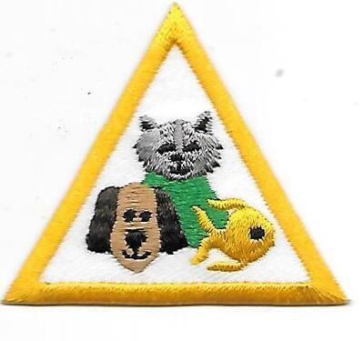 Pets Tanasi Council own Brownie Try it Badge (Original)