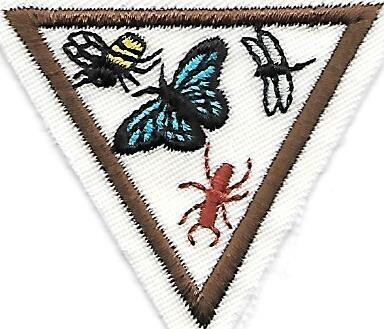 Creepy Crawlers Rolling Hills Council own Brownie Try It (Original)