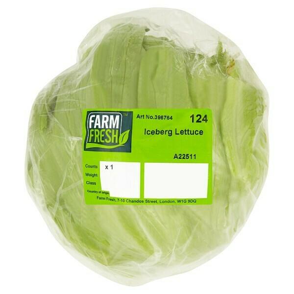 Farm Fresh Iceberg Lettuce  x 1