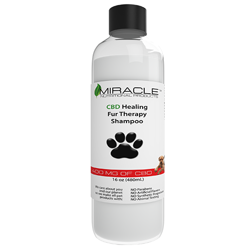 CBD Healing Fur Therapy Pet Shampoo 400mg