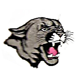 PANTHERS EMBROIDERY EMB215