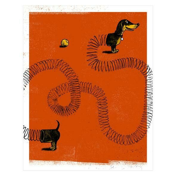 Slinky Dog