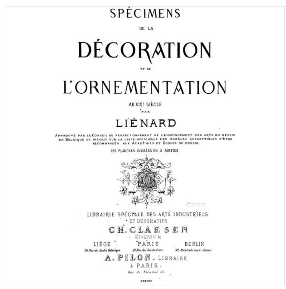 IOD Specimens Charcoal 24x36 Decor Transfer