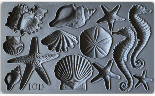 IOD Sea Shells 6×10 DECOR MOULD