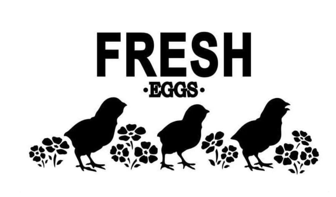 JRV Fresh Eggs Stencil