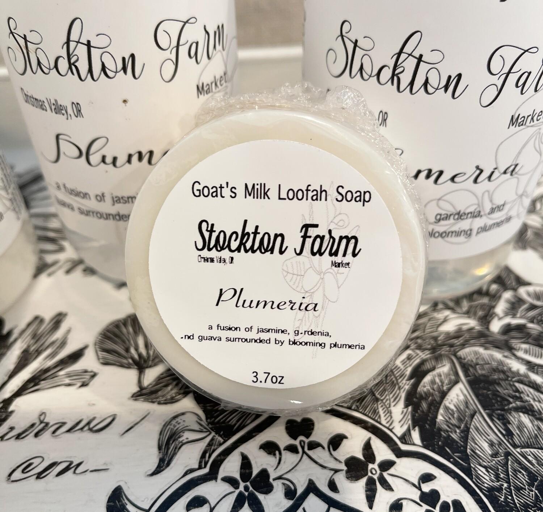 Goat's Milk Loofah Soap 3.7oz - Plumeria