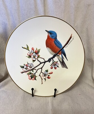 Bluebird North American Songbird Plate By Don Eckelberry