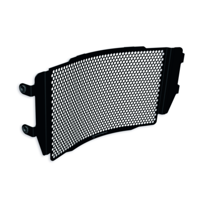 Protective mesh for water radiator.
