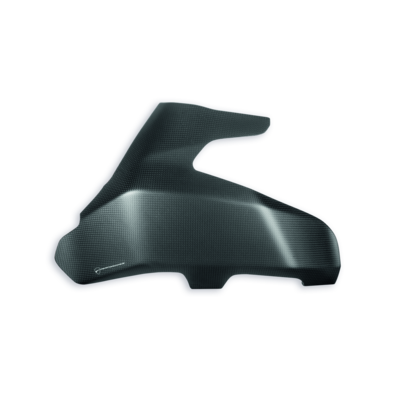 Carbon swingarm guard.
