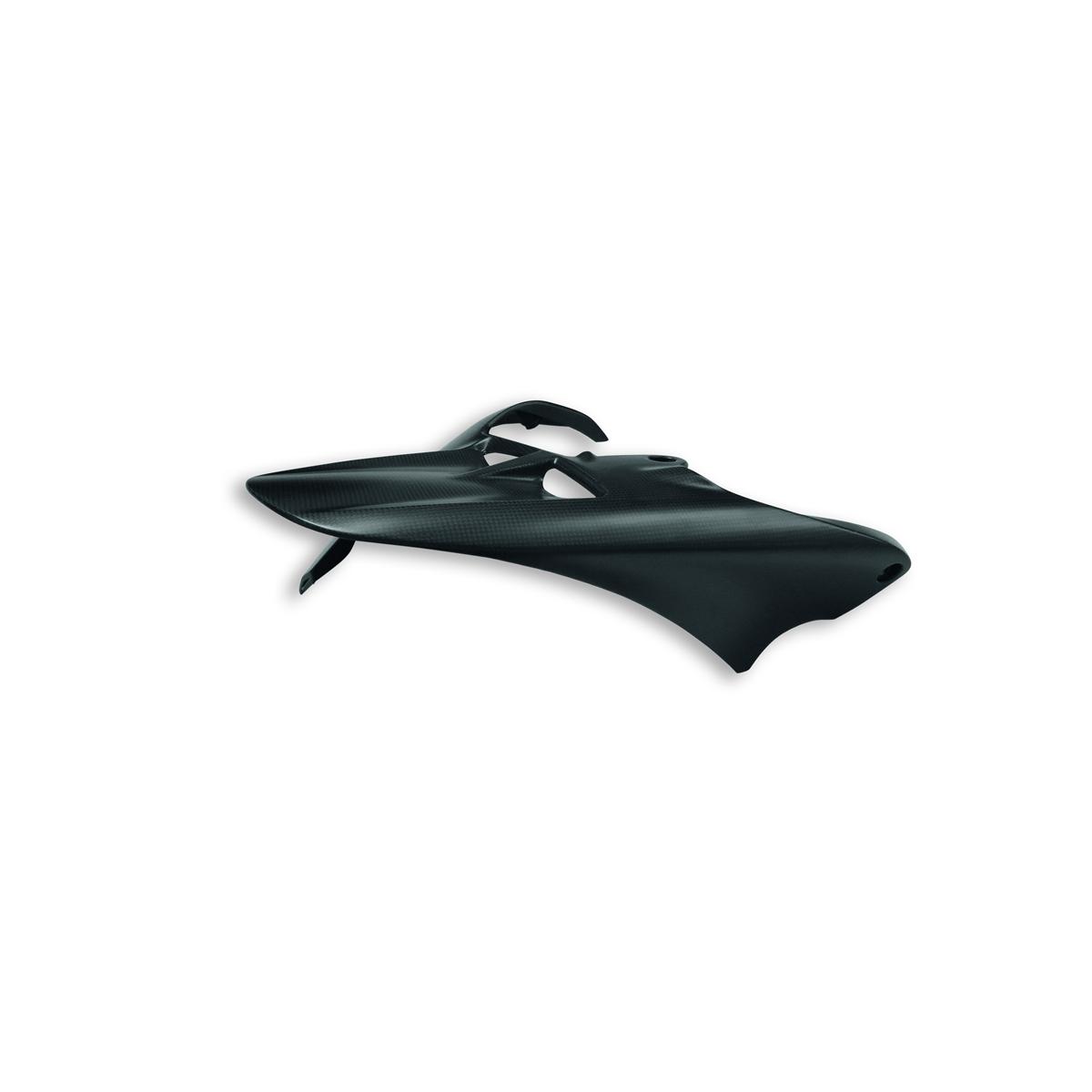 Carbon rear mudguard. 96980821A