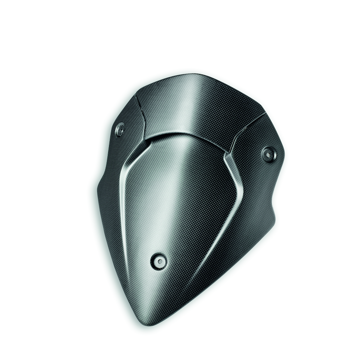 Carbon headlight fairing.