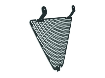 Radiator protective grill.