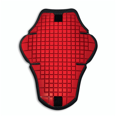 Warrior 2 - Back Protector for prepared leather jacket
