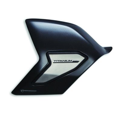 Carbon and titanium swinging arm cover.