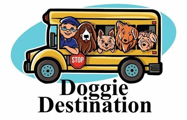 Doggie Destination