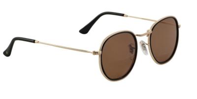 Glassy Hudson Polarized Black/Brown