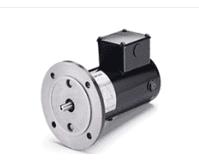 Motor - 1/6hp, 90V (BLS 360/480)