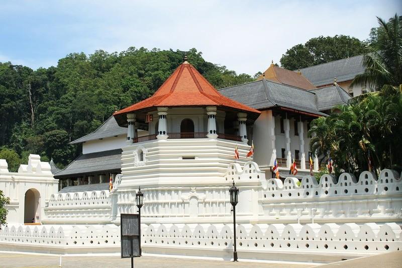 6D Sri Lanka Exotic