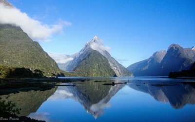 8D South Island:  Fiords & Glaciers