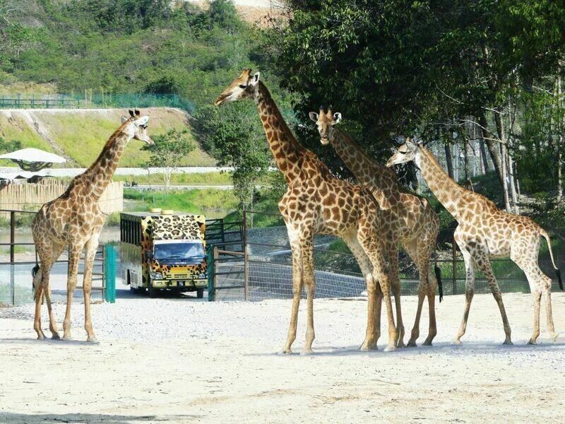 3D2N Bukit Gambang Theme Parks