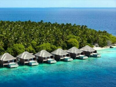 4D3N Maldives Dusit Thani
