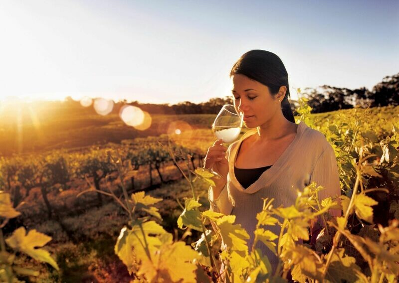 1 Day Grand Barossa Valley with Hahndorf Tour