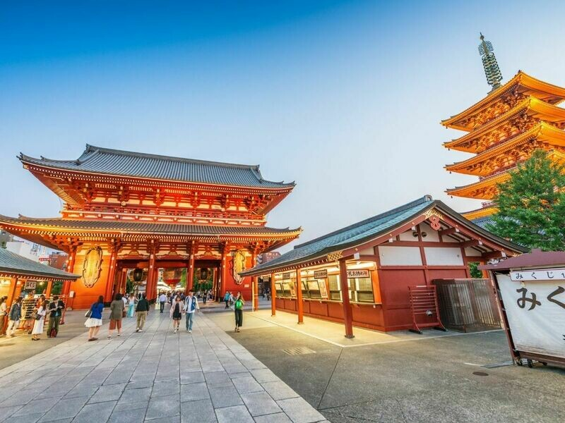 1D Tokyo Grand Full Day Tour [Tokyo Departure]