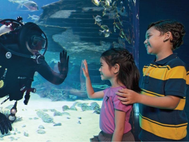 S.E.A. Aquarium Admission Ticket