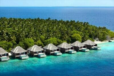4D3N Maldives @ Dusit Thani
