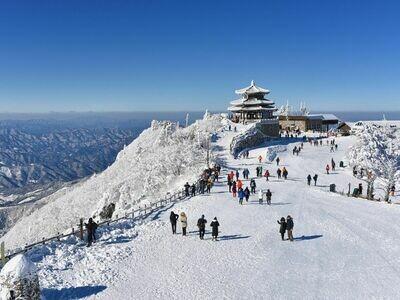 5D4N Seoul Ski Experience Tour