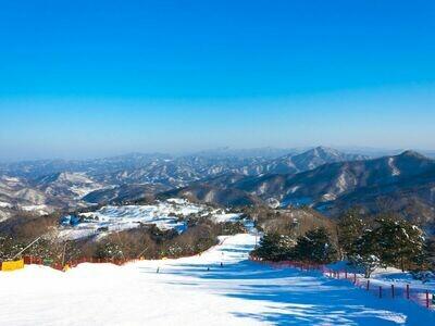 7D6N Seoul Ski Experience + Jeju Tour