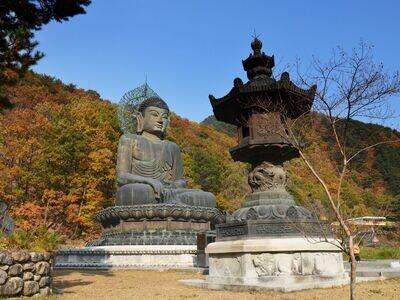1D Mt. Seorak National Park Tour