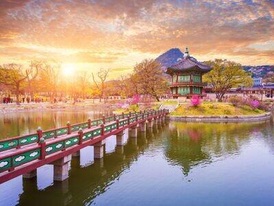4D3N Leisure Seoul
