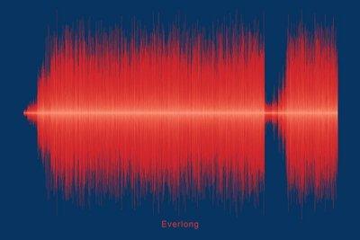 Foo Fighters - Everlong Soundwave Digital Download
