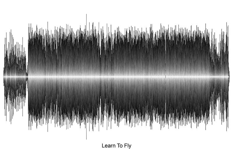 Foo Fighters - Learn To Fly Soundwave Digital Download
