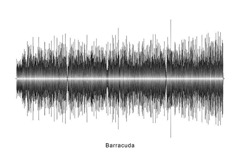 Heart - Barracuda Soundwave Digital Download