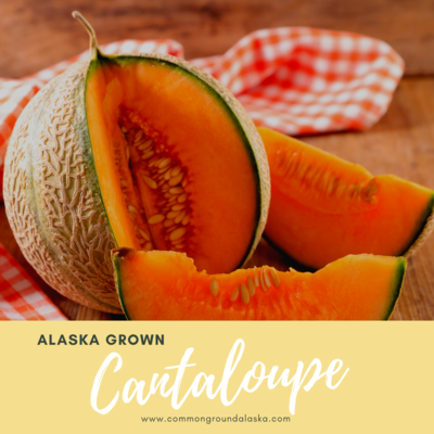 Alaska Grown Cantaloupe