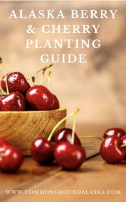 Alaska Berry and Bush Cherry Planting Guide Ebook