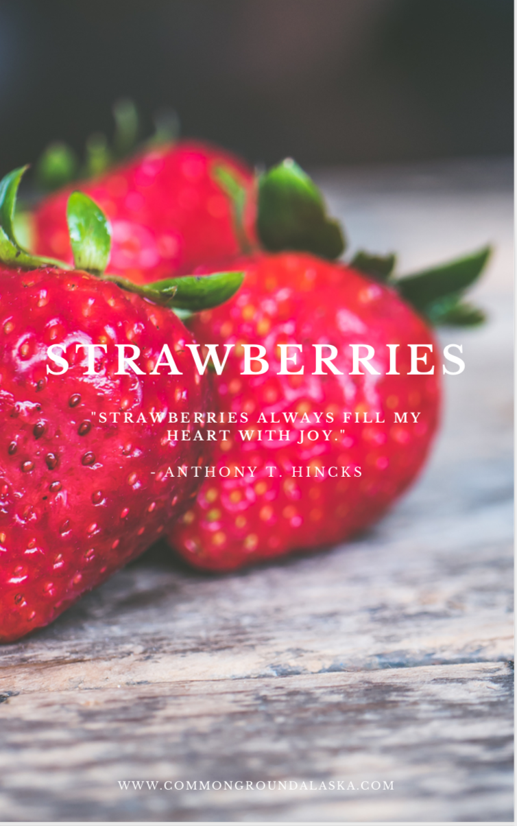 Strawberry Planting Guide Ebook
