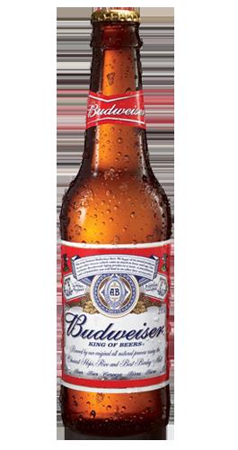 Bud Beer 33cl