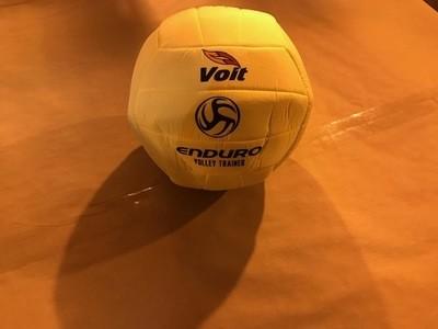 Volleyball, Starter