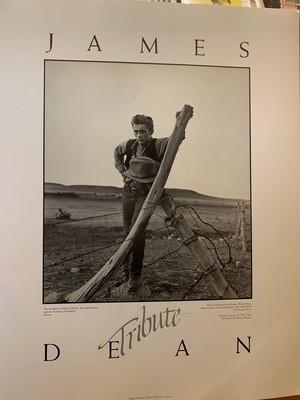 Academy Poster - James Dean