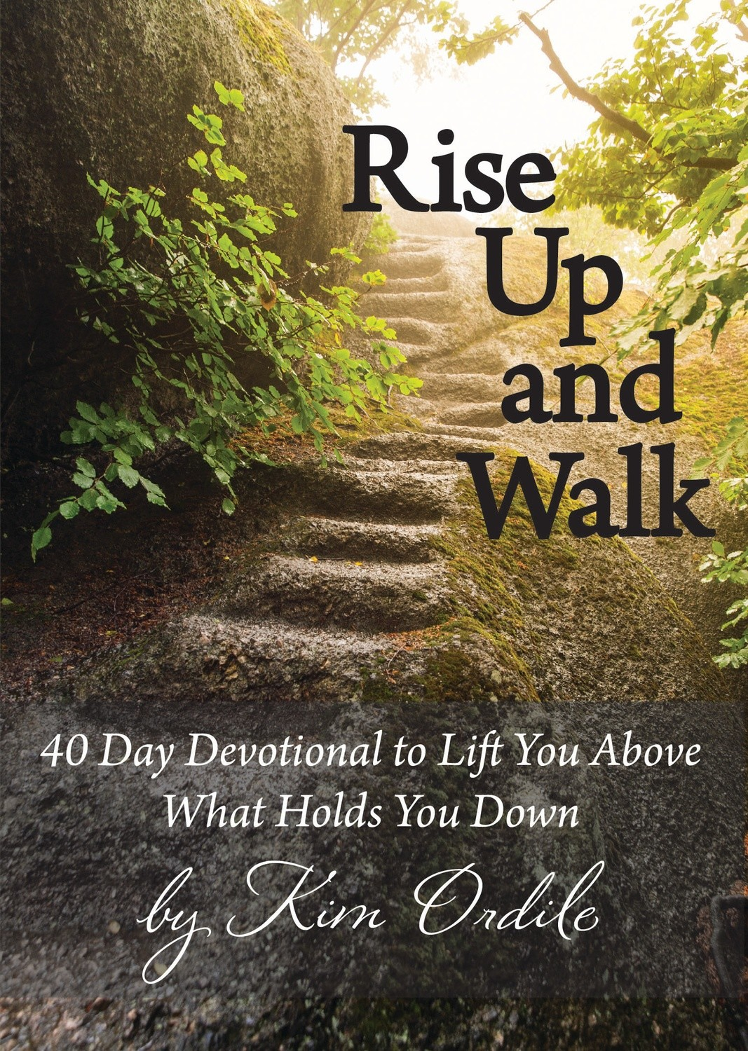 Rise Up and Walk 40 Day Devotional to Lift You Above What Holds You Down