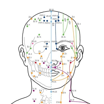 Klasické akupresurní a akupunkturní mapy těla