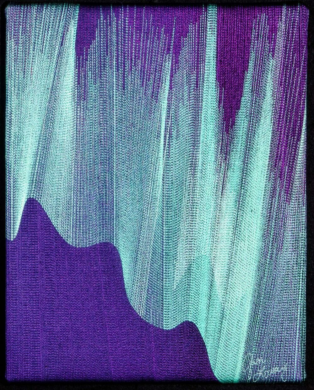 Machine stitching on canvas 13 (Title unspecified)